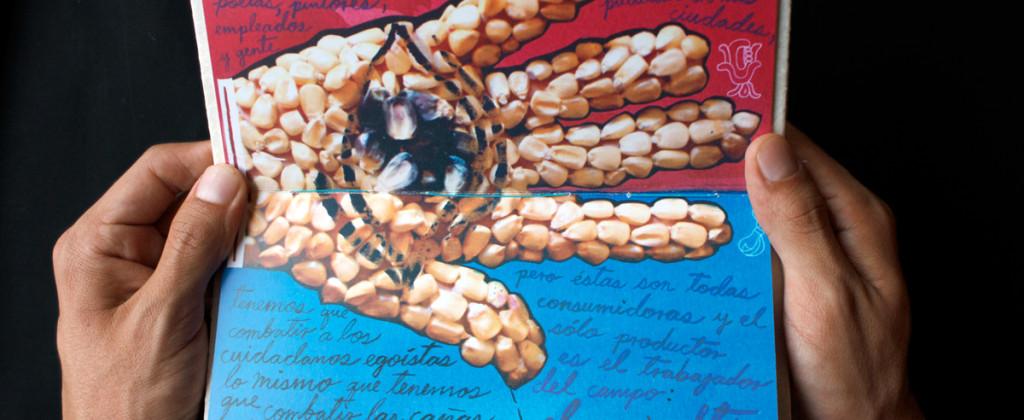 Santiago Robles, Semilla de sol, Libro-arte, Primer lugar, concurso, Bienal Universitaria de Arte y Diseño, UNAM, Libro de artista, Arte, Arte visual, Edición, UNAM, Santiago Robles, Semilla de sol, Libro-arte, Primer lugar, concurso, Bienal Universitaria de Arte y Diseño, UNAM, Libro de artista, Arte, Arte visual, Edición, UNAM, Libro edición 3