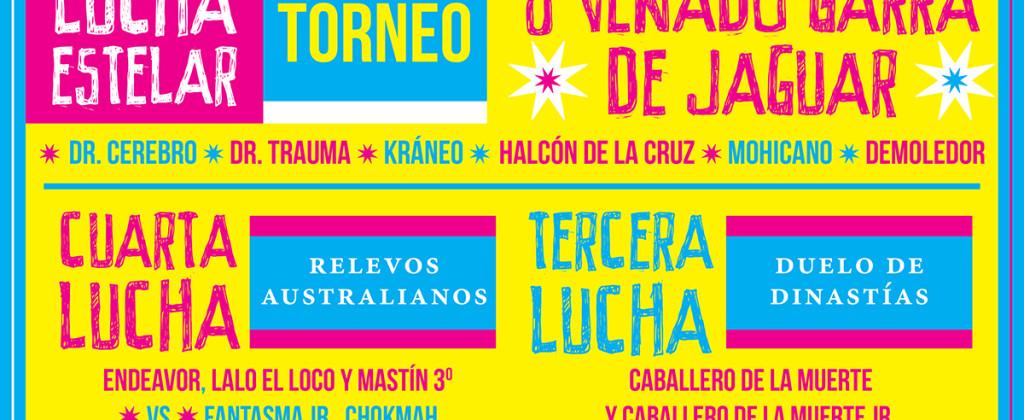 Santiago Robles, Diseño, Diseño de cartel, Ilustración, Design, Poster Design, Illustration, Festival de las Mixtecas, Demián Flores, La Curtiduría, Conaculta, Ceculta, Oaxaca, Mixteca, 2015, Lucha Mixteca