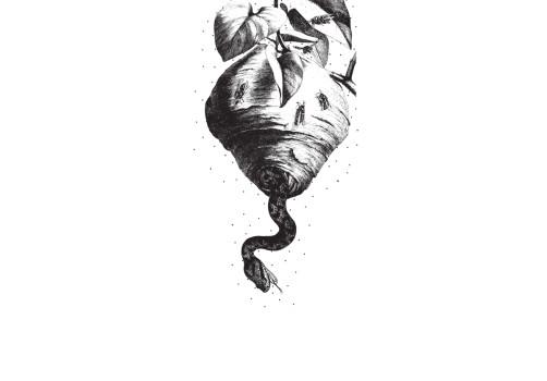 Santiago Robles, Malpaís Ediciones, Archivo Negro de la Poesía Mexicana, Editorial Mexicana, Libro, Libros, Colección, Poesía, Gráfica, Diseño, Diseño Editorial, Jaime Reyes, La Oración del ogro 1