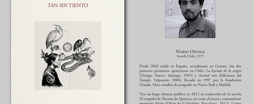 Santiago Robles, Ilustración, Tan Sin Tiento, Poemario, Mario Ortega, Editorial Gravitaciones, España, Poesía, Portada 3