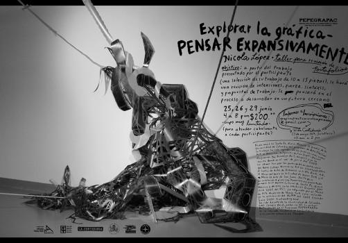 Santiago Robles, Diseño, Diseño de cartel, Ilustración, Design, Poster Design, Illustration, Explorar la Gráfica - Pensar Expansivamente, PEPEGRAPAC, Nicola López, Taller Actual Oaxaca