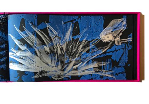 SantiagoRobles, CodiceStarbuckstlan, CODEX, CODEXFoundation, BookFair, LibrodeArte, LibroArte, Art, ContemporaryArt, Biennial, Silencio, LaCurtiduria, MarthaHellion, VisualArt