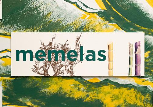SantiagoRobles, YunuenSariego, Zapata, ZapataVivo, Art, ContemporaryArt, ArteContemporaneo, Instalación, Installation, Grafica, Graphic, Exhibition, Exposición, Serigrafia, Silkscreen, Chile, Memelas