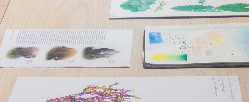 SantiagoRobles, ContemporaryArt, Art, VisualArt, KarlaKaplun, WendyCabrera, Lies, Maize, MuseodelaCiudad, CampamentodeJovenesNaturalistas, Print, Draw, Risograph