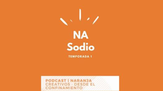 SantiagoRobles, NASodio, Podcast, Confinamiento, Covid, CampoCultural, IndustriaArtistica, Arte, ArteContemporaneo, Museos, ContemporaryArt, Pandemia