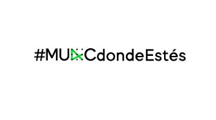 MUAC, SantiagoRobles, Diplomado, ArteContemporaneo, NataliadelaRosa, ContemporaryArt, ArteVisual, VisualArt