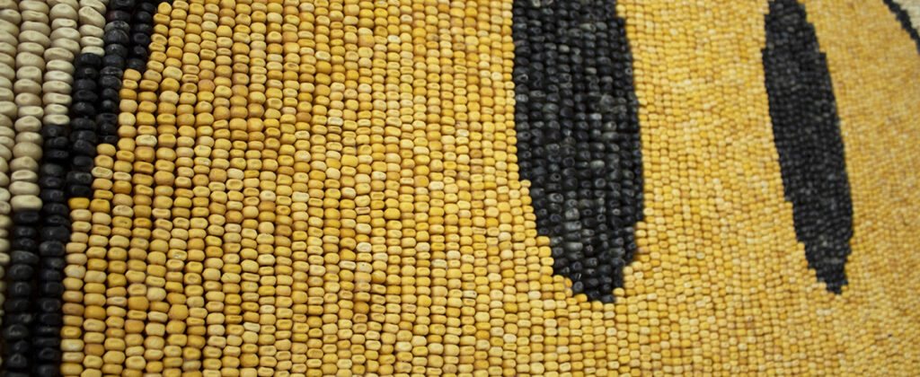 maiz, chahuistle, santiagorobles